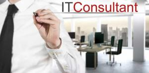 what is an it consultant