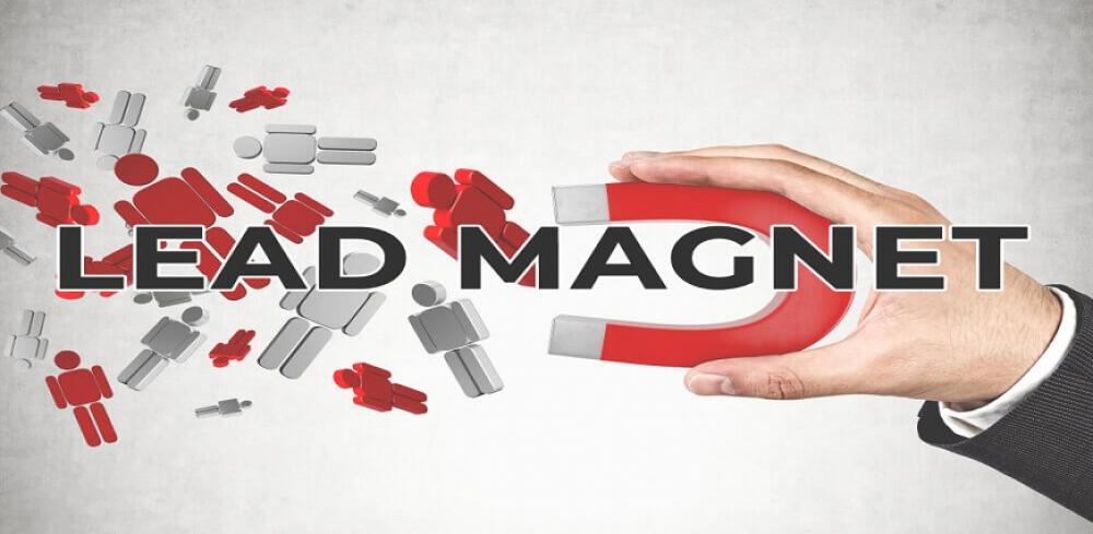 what are lead magnets