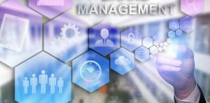 Brand and Content Management System