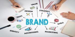 Brand Management & Development