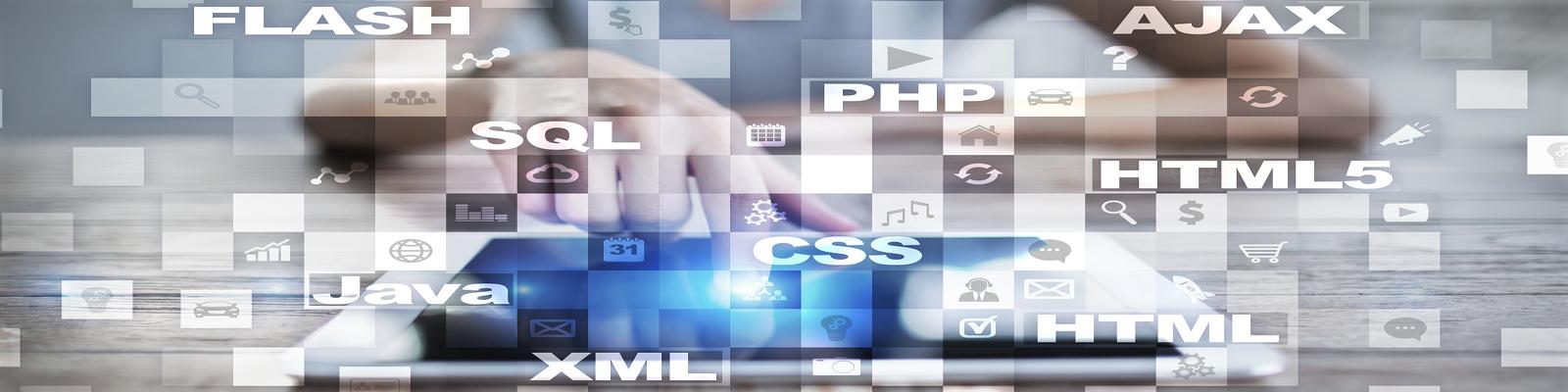 Mont Digital Web Developmnt